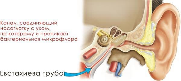 осложнения гайморита