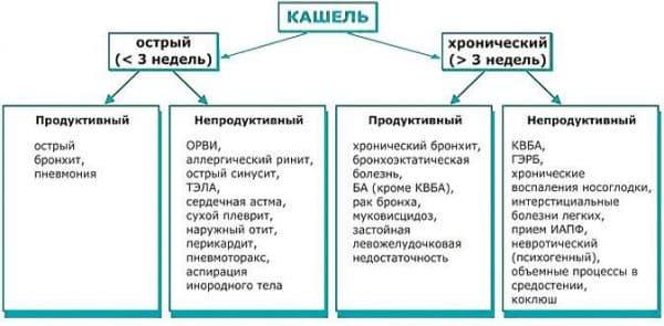 разновидности кашля и причины возникновения