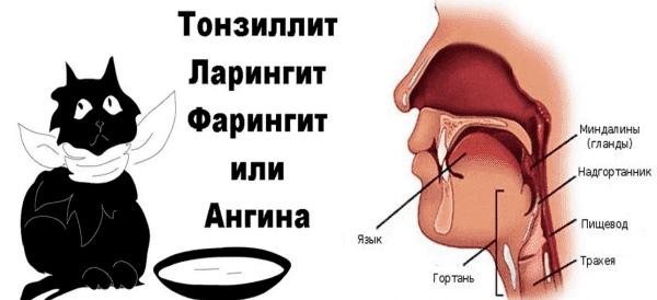 факторы взлияющие на першение в горле