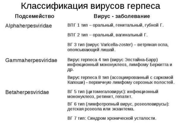 Классификация вирусов герпеса