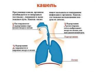 после простуды не проходит кашель