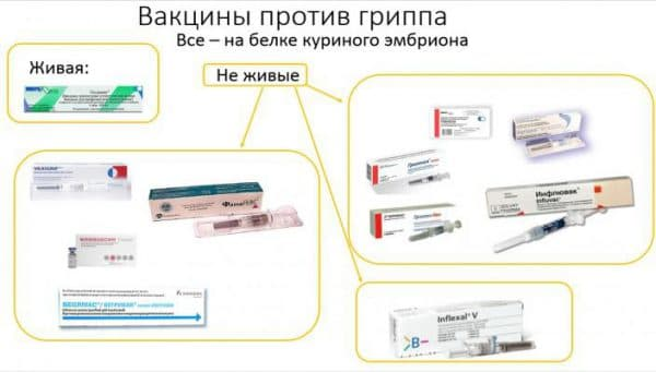 vakciny-protiv-grippa