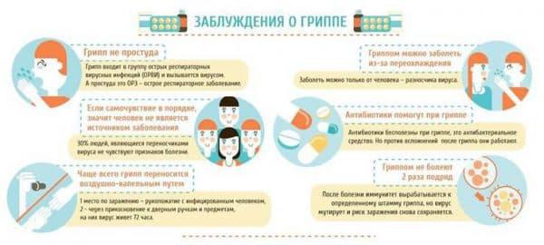 zabluzhdeniya-o-grippe
