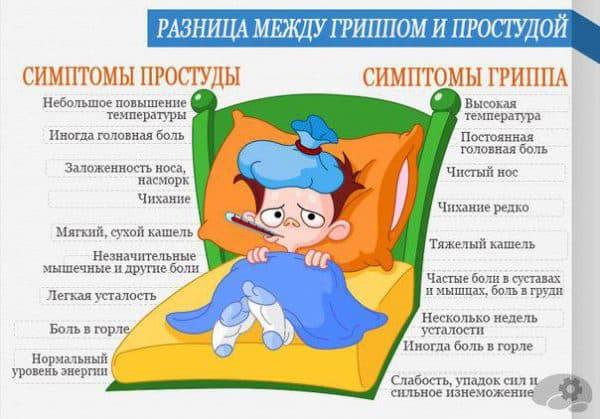 prostuda-i-gripp
