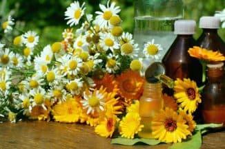 Цветы ромашки в народной медицине для лечения отита