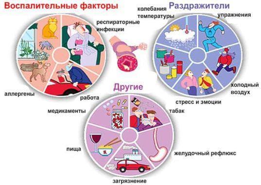 Аллергены и возбудители ринита
