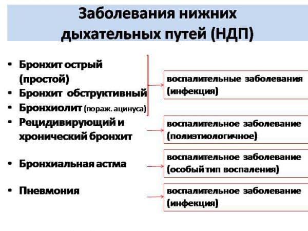 zabolevaniya-nizhnix-dyxatelnyx-putej