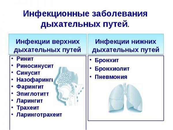 infekcionnye-zabolevaniya-dyxatelnyx-putej