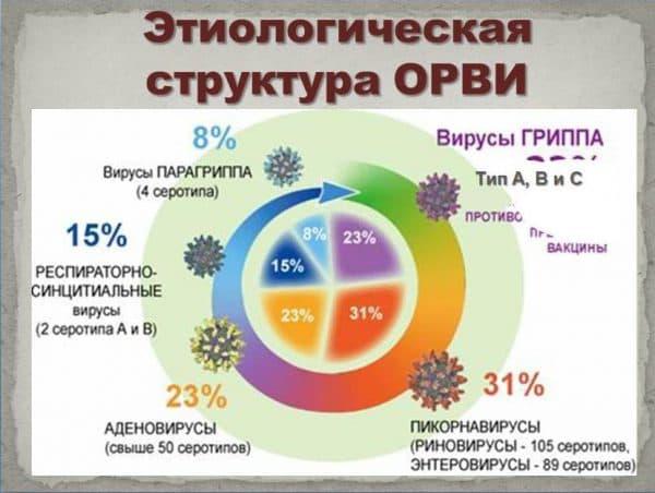 etiologicheskaya-struktura-orvi
