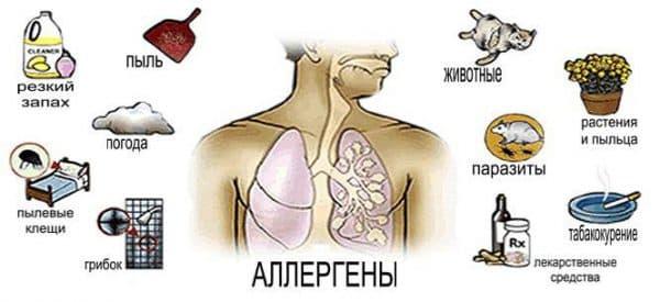 Популярные аллергены