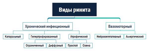 vidy-rinita