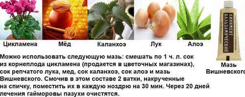 lechenie-gajmorita-narodnymi-sredstvami