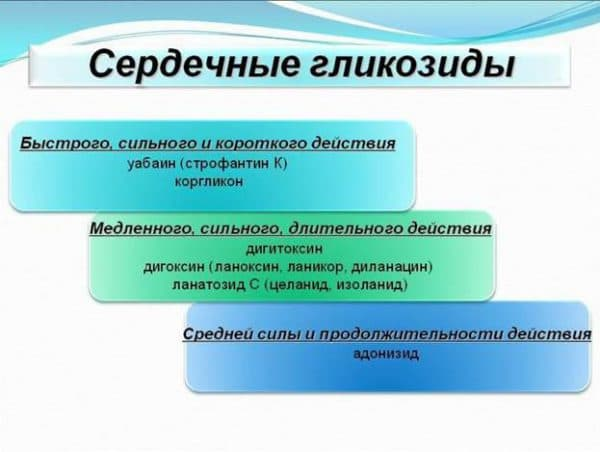 serdechnye-glikozidy