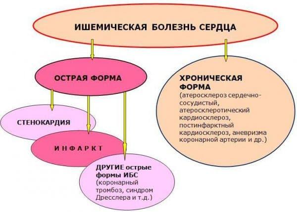 xronicheskie-bolezni-serdca
