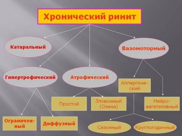 xronicheskij-rinit
