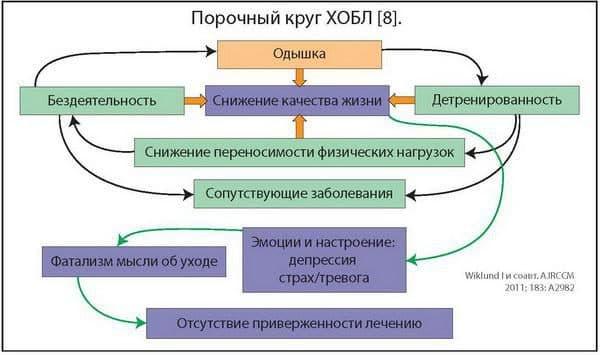 porochnyj-krug-xobl