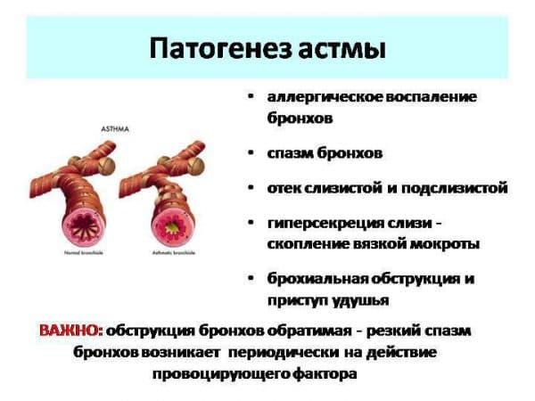priznaki-astmy