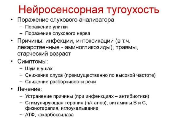 xarakteristika-tugouxosti
