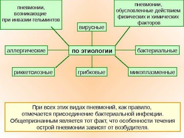 Классификация пневмоний по типу возбудителя