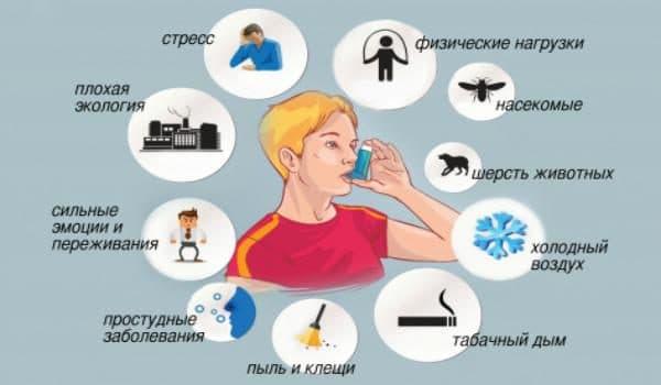 Факторы, провоцирующие приступ астмы