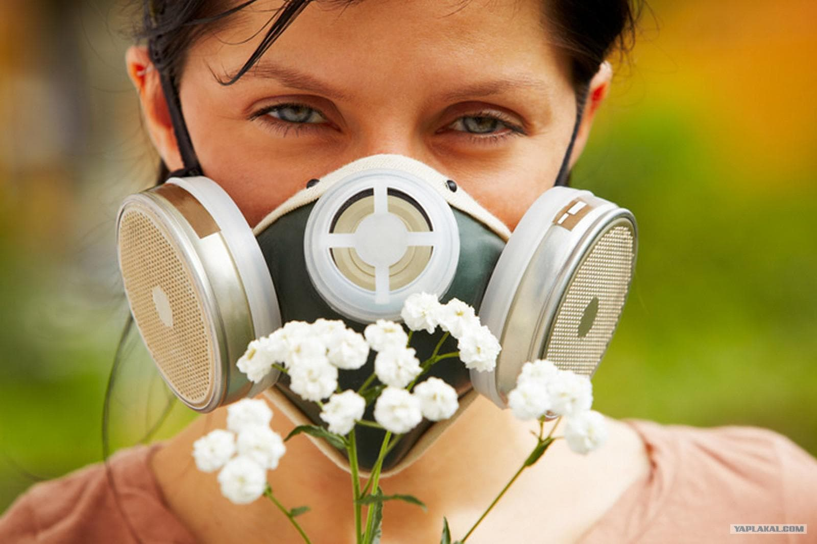 Препараты при аллергическом рините у взрослых